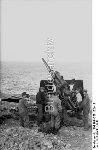 WN 041, Batterie de la Raison (Collioure, 66)  Lgs04115