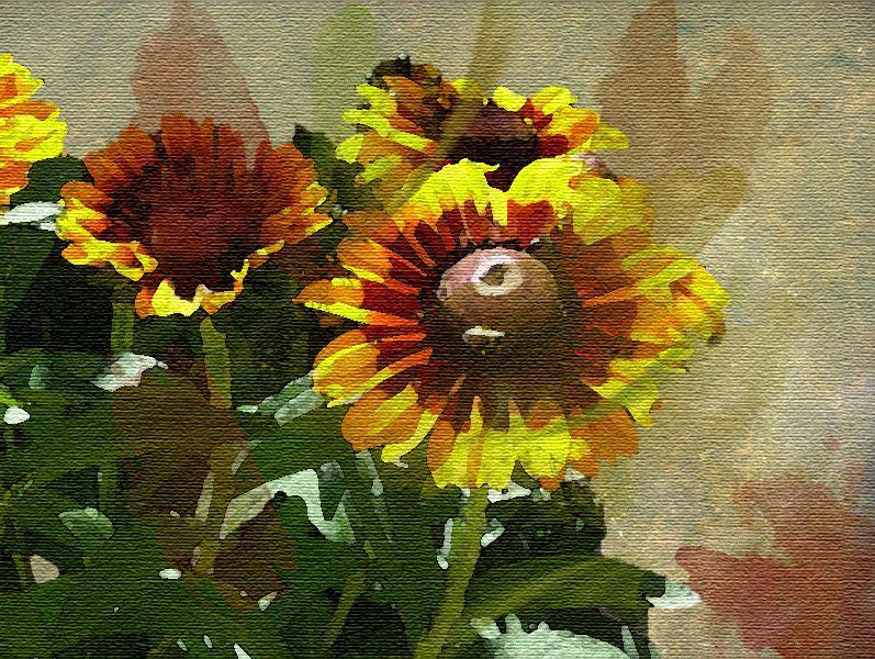 Tuto 10 _ les effets sur photo  - Page 6 Image122