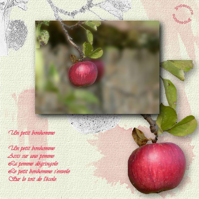 Des pommes, des poires... Image134