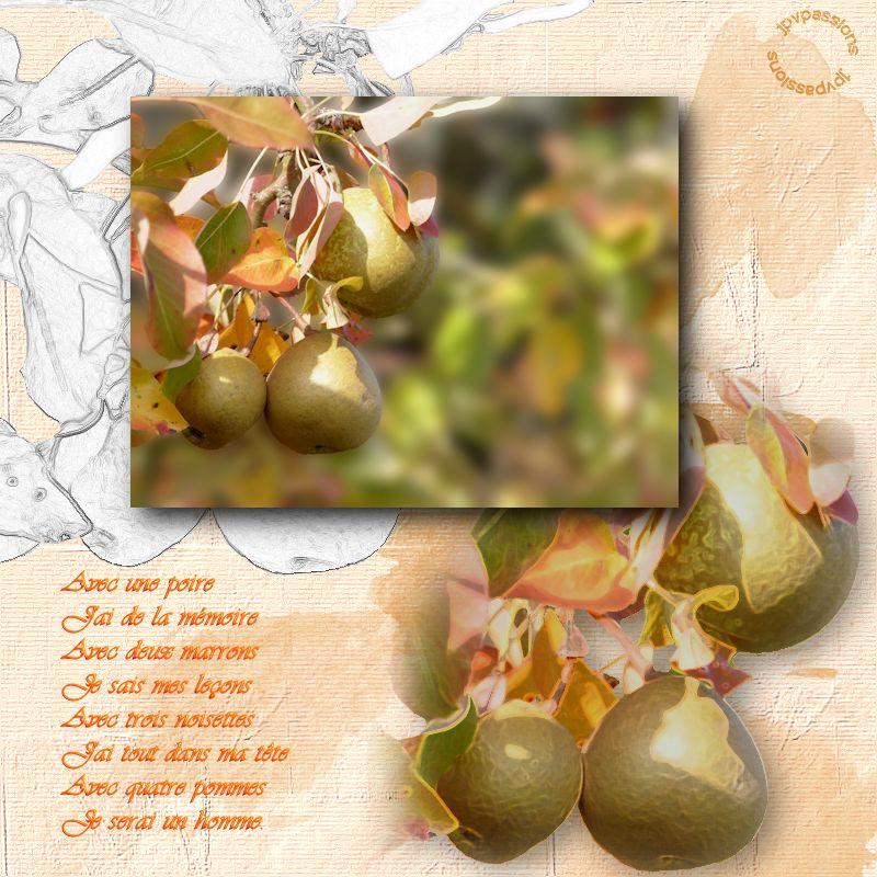 Des pommes, des poires... Image135