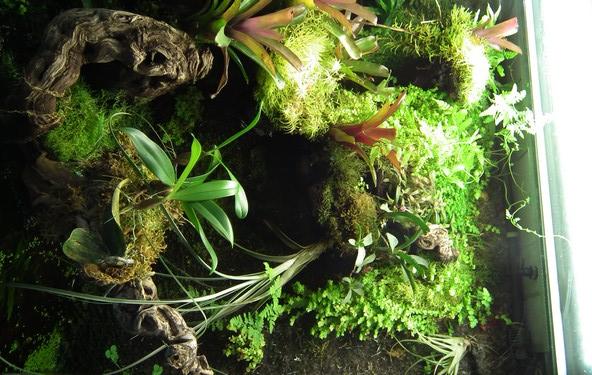 L'Eco-Palu de phill (photos)  - Page 5 Dscf1710