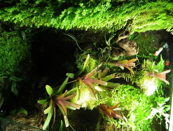 L'Eco-Palu de phill (photos)  - Page 5 Dscf1712
