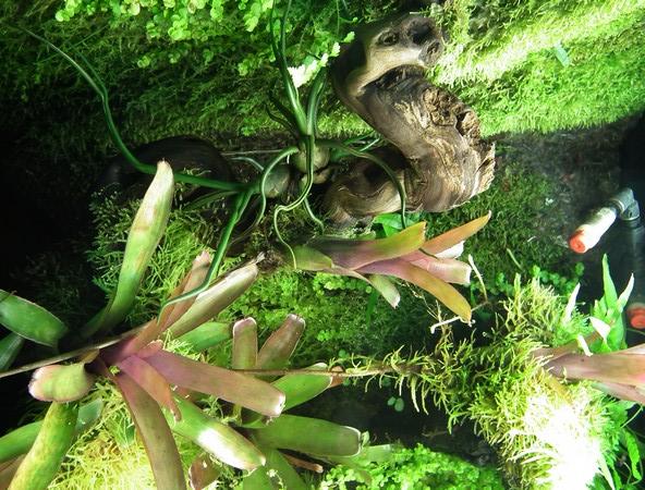 L'Eco-Palu de phill (photos)  - Page 5 Dscf1713