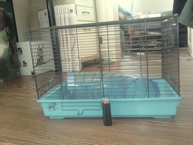 Donne cages et cage de transport ayant servi 10635910