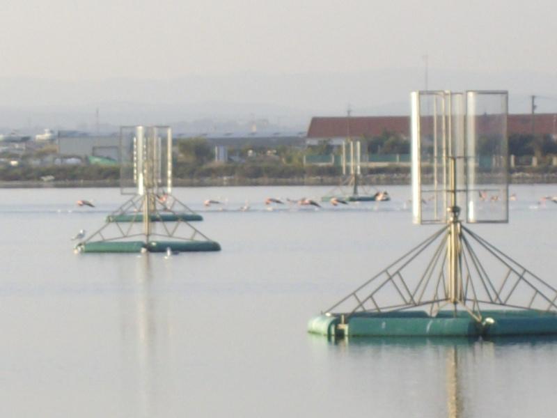 Hydroliennes Oxygénantes à Palavas les Flots Eoles_10