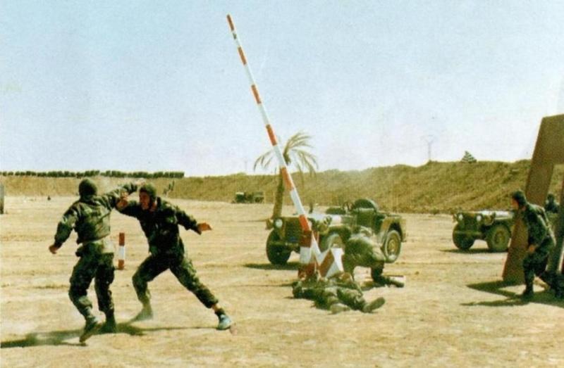 موسوعة الصور الرائعة للقوات الخاصة الجزائرية Zy10