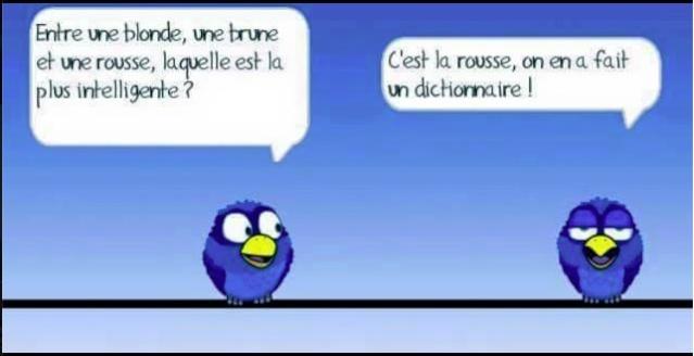 Les Birds - Page 13 Les_bi12