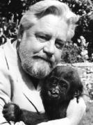 Gérald Durrell, naturaliste et écrivain Durrel10