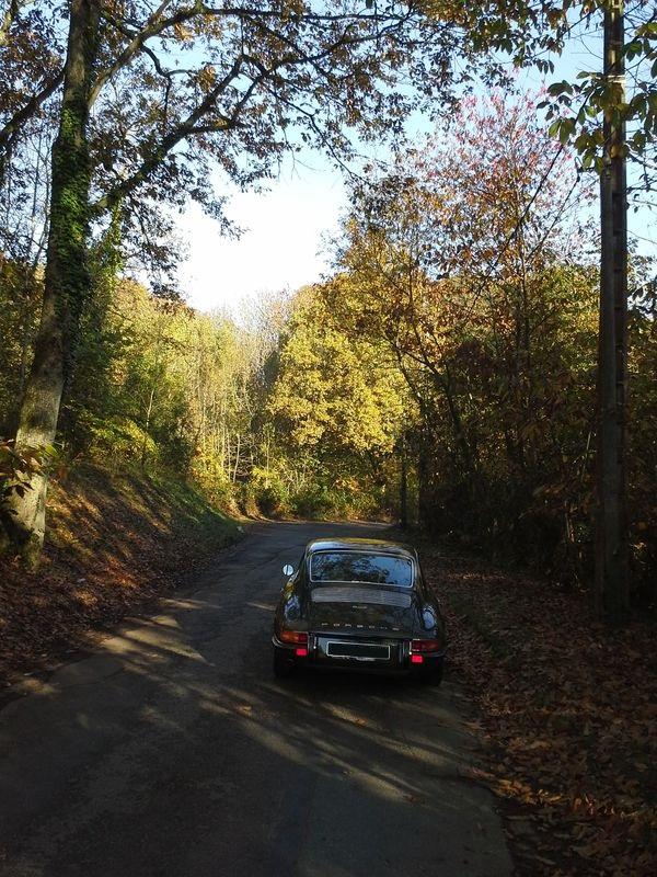 Porsche en automne - Page 2 20151110