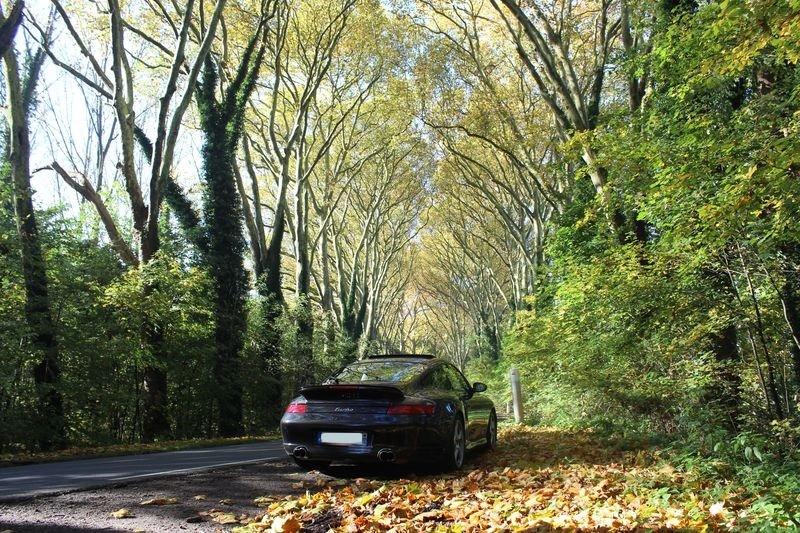 Porsche en automne - Page 3 Img_1311