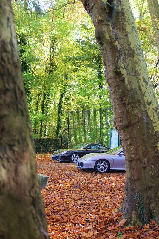 Porsche en automne - Page 4 Img_1313
