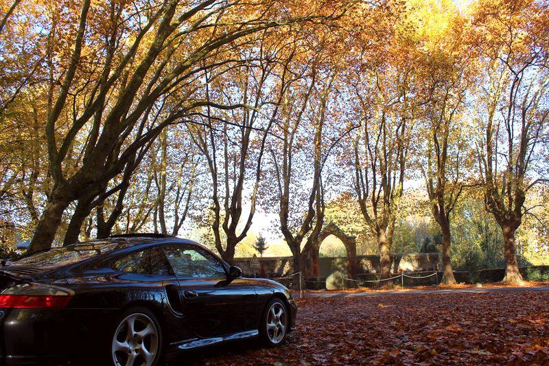 Porsche en automne - Page 4 Img_1314