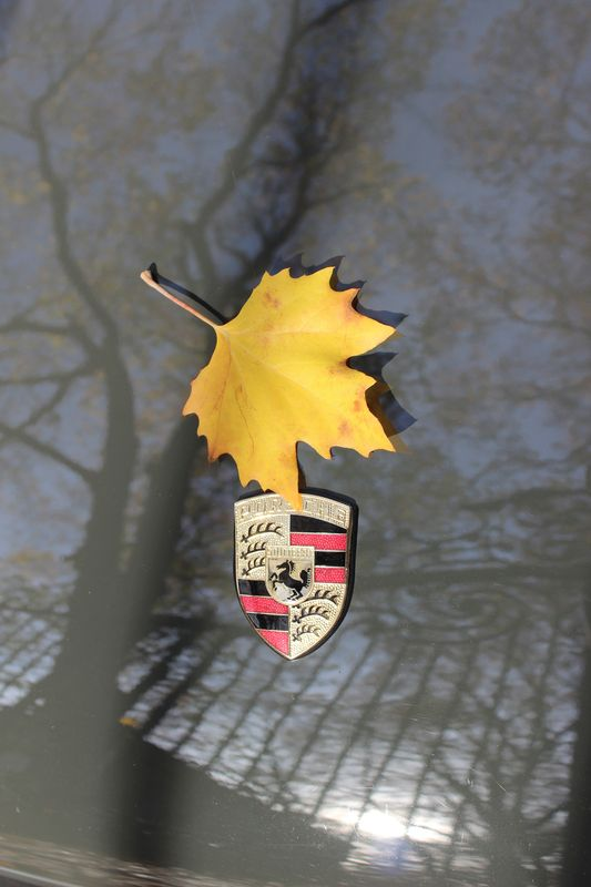Porsche en automne - Page 5 Img_1414