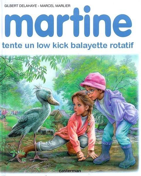 Martine se promène sur Internet Martin10