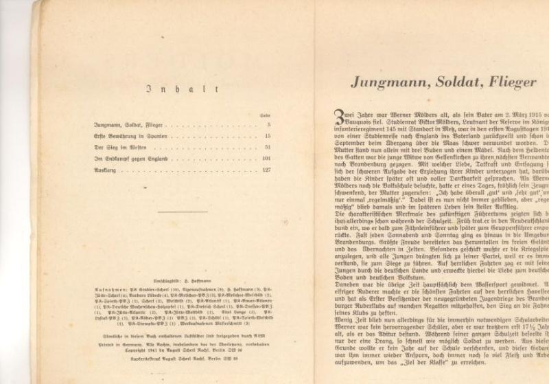 """Jagdgeschwader 53 """"Pik As"""" M310"""