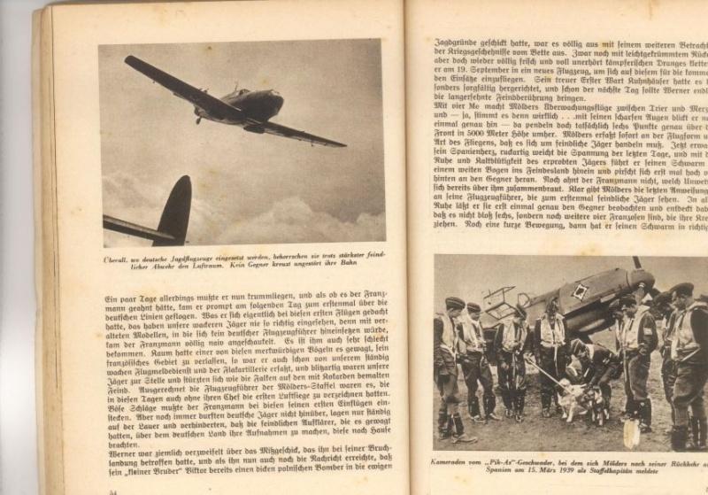 """Jagdgeschwader 53 """"Pik As"""" M410"""