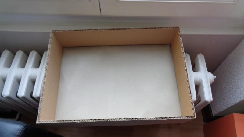 une petite boite Dsc00047