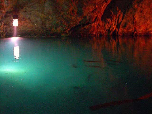 Des grottes a truites Truite10