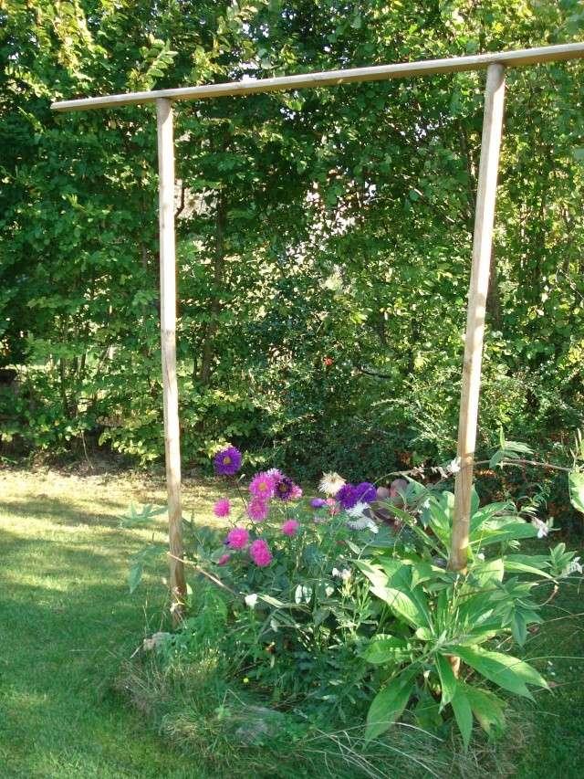le jardin de Giroflee - Page 5 Coul_111