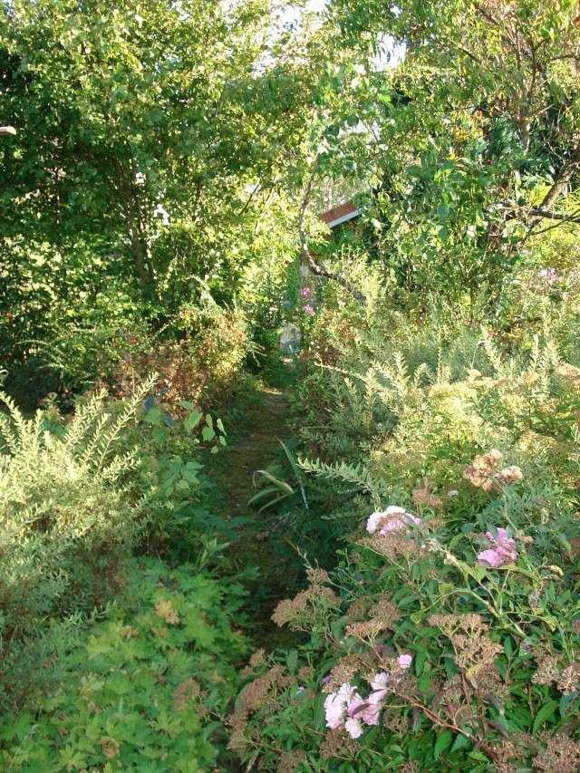 le jardin de Giroflee - Page 5 Coul_112