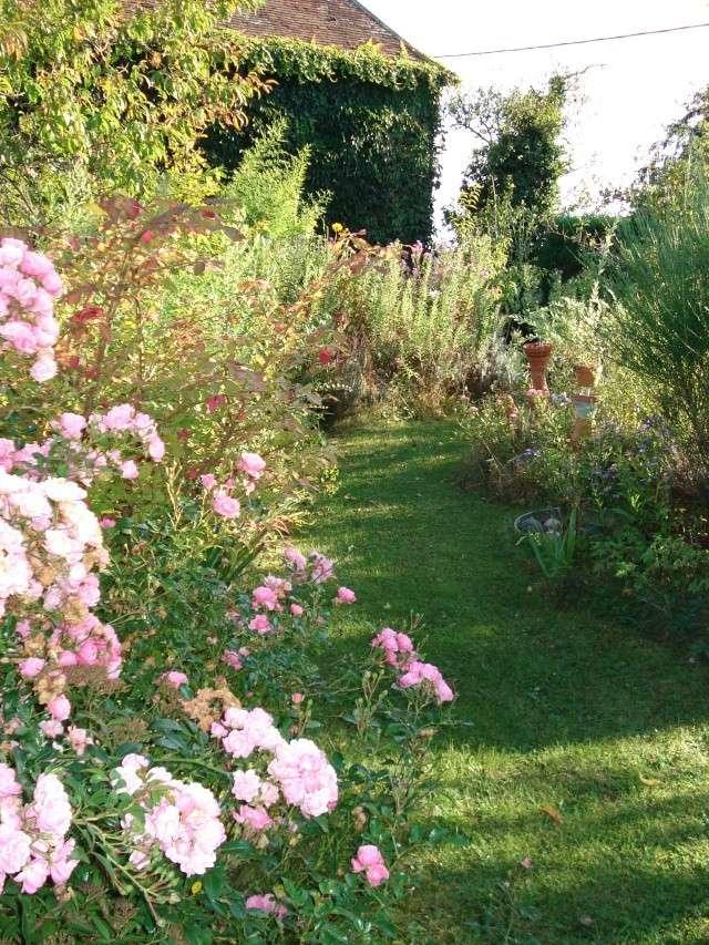 le jardin de Giroflee - Page 5 Coul_115