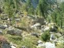 [Trail du Guillestrois 2007] Jymm Dscf0028