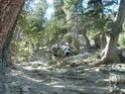 [Trail du Guillestrois 2007] Jymm Dscf0029