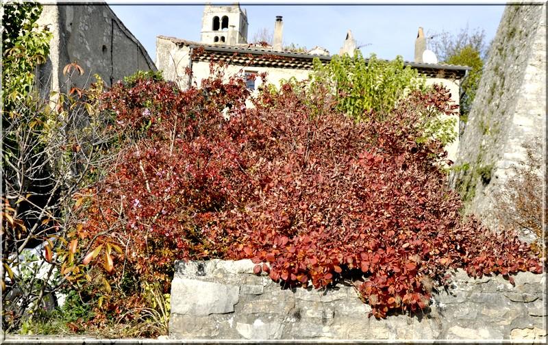 l'automne et ses couleurs  sont là _dsc0047