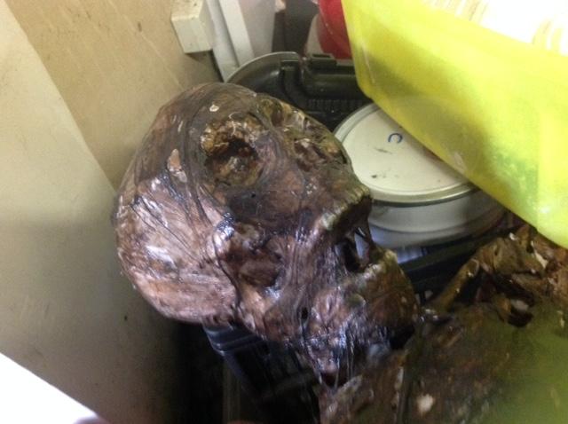 Sculpture momie en Chavant Img_3010