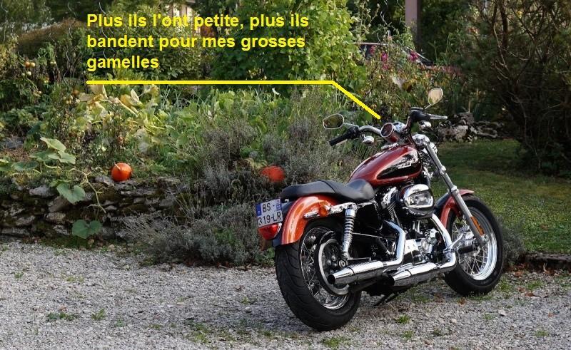 Oui mais il n'y a pas que les motos dans la vie..... - Page 27 Dsc05110