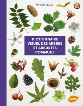 Un ouvrage sur les arbres et arbustes, remarquable Dictio10
