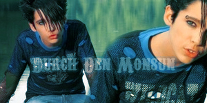 [Créations]Mes montages Tokio Hotel. - Page 13 210