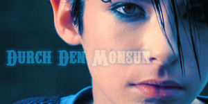 [Créations]Mes montages Tokio Hotel. - Page 13 310