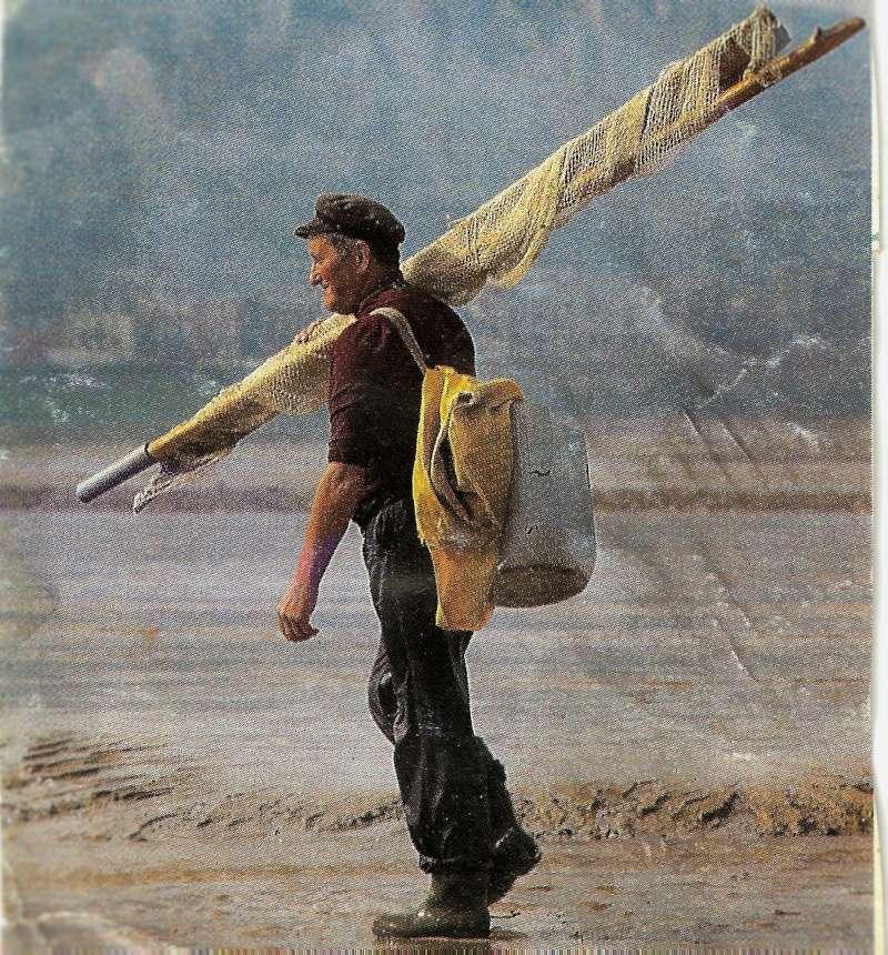 le pêcheur de crevettes Numyri10