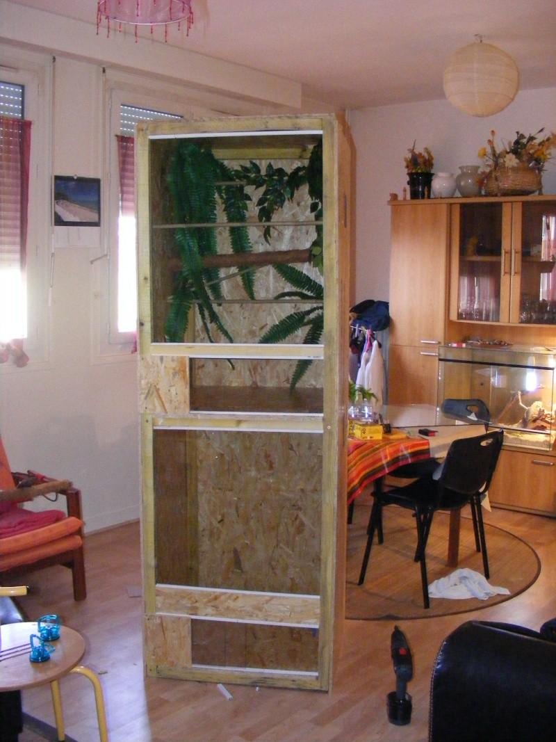 terrarium 2007_010
