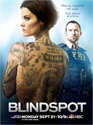 BLINDSPOT 08376111