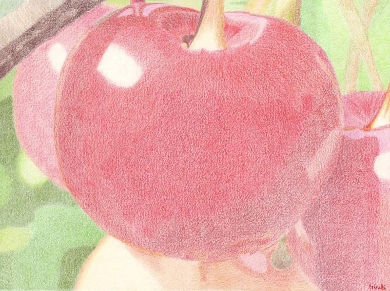 Pomme ou Cerise? 28_jui10