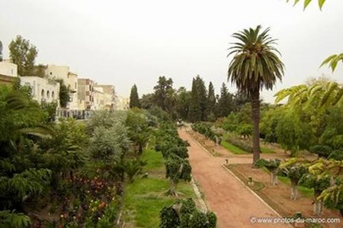 Meknès, la Ville Ancienne et les 2 Mellahs 1 15085110