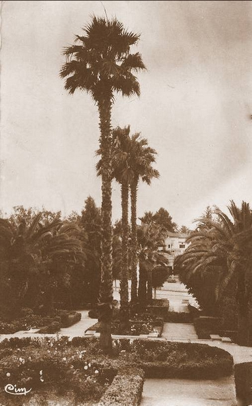 L'Ecole D'Horticulture de Meknès 1920_j11