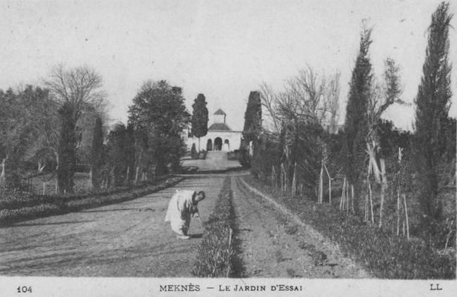 L'Ecole D'Horticulture de Meknès 2-192010