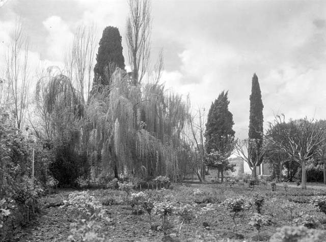 L'Ecole D'Horticulture de Meknès 3-192010