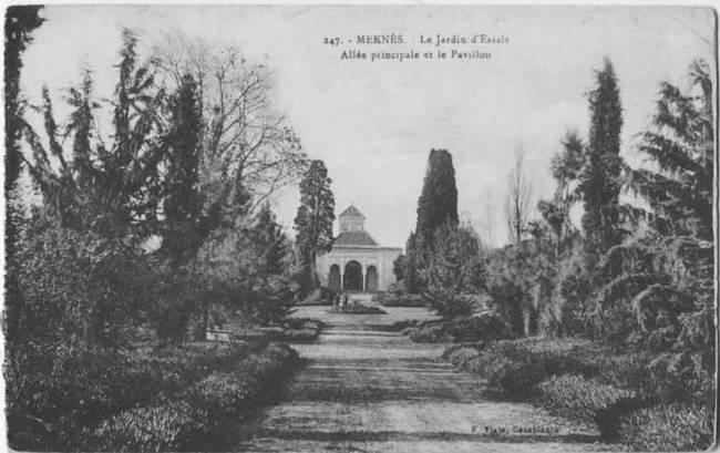 L'Ecole D'Horticulture de Meknès 4-192010