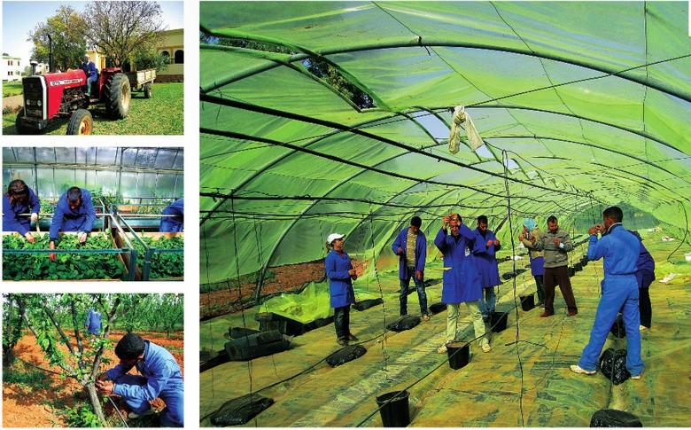 L'Ecole D'Horticulture de Meknès 4-inst10