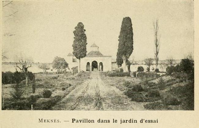 L'Ecole D'Horticulture de Meknès 5-192010