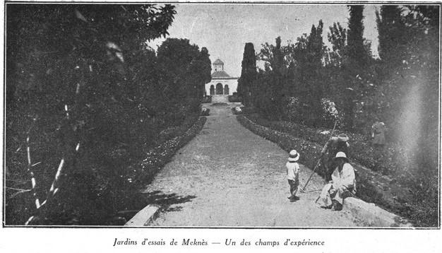 L'Ecole D'Horticulture de Meknès Jardin16