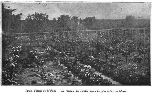 L'Ecole D'Horticulture de Meknès Jardin18