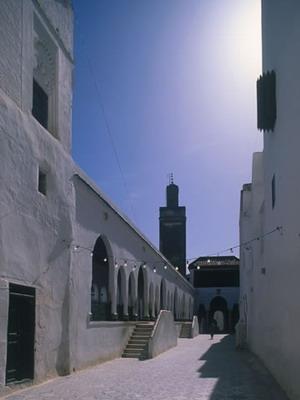 Les environs de Meknès 1 Mosque10