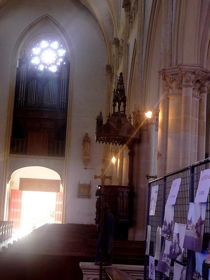 le grand orgue Nef_vu10