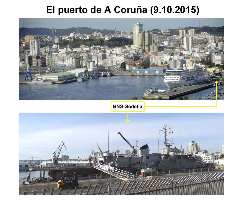 A960 Godetia : les news - Page 33 20151010