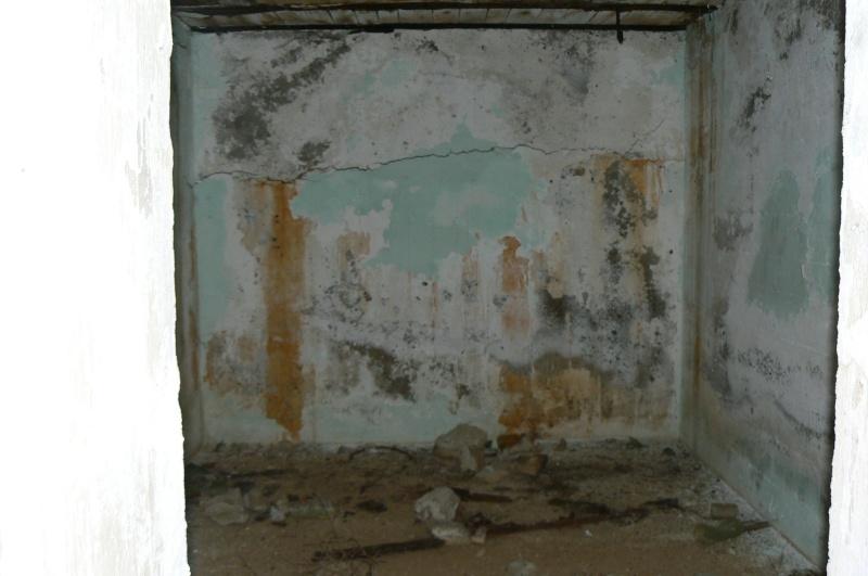 Rhl 044, Les Laurons (Martigues, 13) P1030414